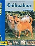 Chihuahua, Praxisratgeber