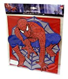 SPIDERMAN Wandbild Bild Wanddekoration ideal für Kinderzimmer ca 28x28cm DECOFUN