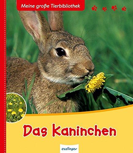 das-kaninchen-meine-grosse-tierbibliothek