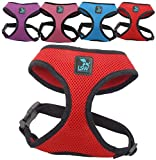 No Pull Small Dog - Pet Harness - Breathable Mesh - Range of