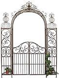 DanDiBo Ambiente 120853 Arche à roses en fer forgé avec portail 265 x 190 cm...