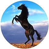Tortenaufleger Tortenfoto Aufleger Foto Bild Pferd rund ca. 20 cm (2) *NEU*OVP*