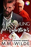 A Hatchling for Valentine's: A Valentine Romance (Vale Valley Season 2 Book 8) (English Edition)
