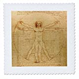 3dRose qs_155633_10 Vitruvian Man by Leonardo Da Vinci 1490-Fine Anatomical Art-Human Anatomy Pen and Ink Drawing-Quilt Square, 25 by 25-Inch