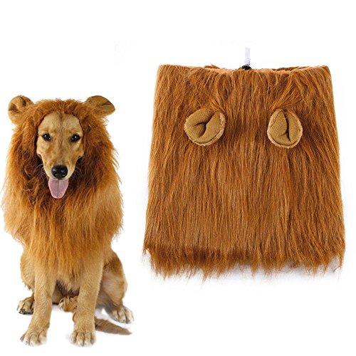 HanDingSM Hund Kostüm Lion Mähne Perücke für Hund lustige Halloween verkleiden Sich Cosplay, geeignet für mittlere und große Hunde (Eared) (Verkleiden Sich In Halloween)