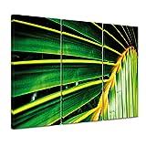 "Bilderdepot24 Leinwandbild ""Palmenblatt - Malediven"" 120 x 80 cm 3tlg - fertig gerahmt, direkt vom Hersteller"