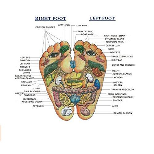 Mhgao maschio Foot massaggio massaggio pantofole naturale ciottoli punto Care Home pantofole light coffee