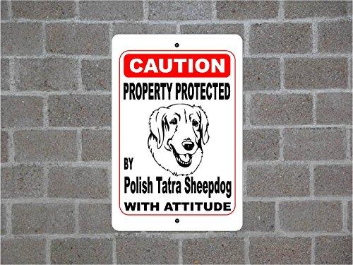 Panneau pour Funny Cadeau Propriété protégée par Vernis de chasse Chien de Garde d'avertissement des Races en métal en aluminium Sign Plaque murale Décoration Caution Sign 30x45cm Couleur 4