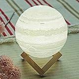 OUSENR Tischleuchte 3D Moonlight Fashion Led Dekorative Lampe Nachtlicht Romantisches Geburtstagsgeschenk Mond Nachtlicht Usb-Batterie, Warmes Weiß
