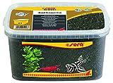 sera 32268 Gravel Anthracite Ø 1-3 mm, 6 l, anthrazit - Aquarienkies ideal für Garnelen & Krebse sowie für gründelnde Welse