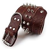 WENXX Hundehalsband Großen Hund, Hundehalsband Lederhalsband, Hundehalsband Breite 3,5 cm, Doppelstab Kragen Kragen Hundehalsband