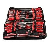 DYNATEC Werkzeugtasche mit Schraubendrehern und Bohreinsätzen, 100-teilig