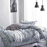 WOLTU BWS01m03, Bettwäsche Set 100% Baumwolle Satin kuschelig & warm, Bettgarnitur Bettbezug 200x200 cm + 2X Kissenbezüge 80x80 cm, zweiseitig mit gestreift Muster(Grau)