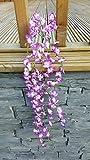 Best Artificial-Ghirlanda di fiori, lunghezza 80 cm, da appendere per piante di vite viola