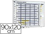 Planning Sisplamo 1000/50 - Planificador magnético anual día a día, 90 x 120 cm