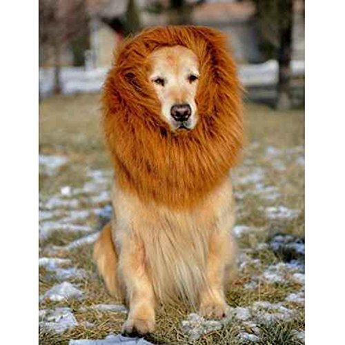 Kostüm Für Hunde Löwe Diy (Löwe Mähne Perücke für Hunde Liebenswürdig, PET Hat Katze Hund Kleid bis mit Ohren Funny Katze Hund Little Puppy Kostüm (mit Ohr) Haustierzubehör Welpen Kurze)