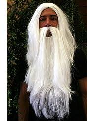 Set: perruque et barbe de sorcier/magicien, magicien blanc.