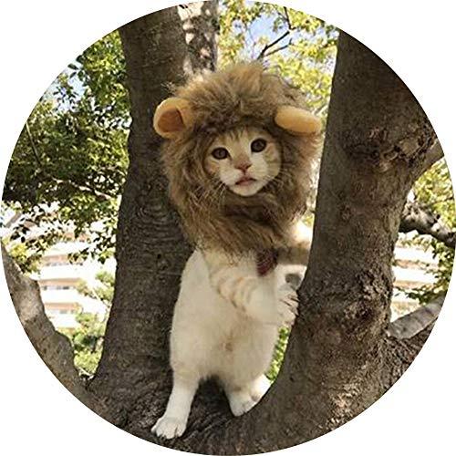 Pelzige Katze Kostüm Schwarze - WMWJDQ Halloween Haustier,Haustier Kostüm Löwe Cosplay Für Hunde Katze Halloween Karneval Mit Ohren,Haustier Kostüm Löwe,Löwenmähne Mit Ohren,L