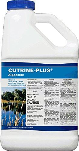 cutrine-plus-algizid-aufgetragen-bio-apotheke-aquatic-herbizide