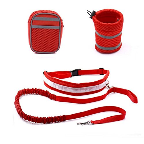 pet-leash-han-shi-pour-animal-domestique-taille-elastique-sangle-traction-corde-avec-support-pour-bo