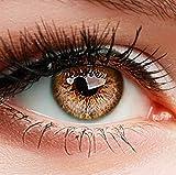 Farbige Kontaktlinsen SUPREME BRAUN HASELNUSS HELLBRAUN ohne Stärke BESONDERS NATÜRLICH