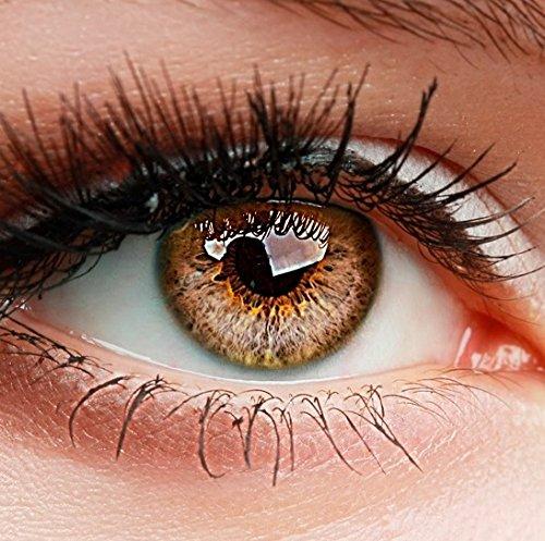 ELFENWALD farbige Kontaktlinsen, 3-Monatslinsen, besonders natürlicher Look, maximaler Tragekomfort, SUPREME Serie, ohne Stärke, 1 Paar weiche Farblinsen ohne Zusatzbehälter (Haselnuss)