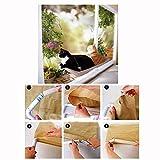 Anself 22 * 12 Lit panier couchage siège coussin suspendu pour chat animaux lavable