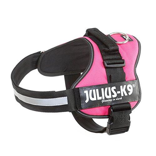Julius-K9 162DPN-2 Power Harness, Tamaño 2, Rosa Oscuro