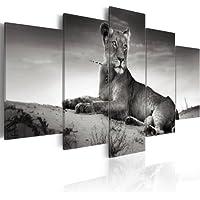 200x100 !!! FORMATO GRANDE + Impresion en calidad fotografica + 5 partes + Naturaleza + cuadro 030216-4 + 200x100 cm +++ GRAN VARIEDAD DE CUADROS Y IMPRESOS ARTÍSTICOS EN NUESTRA TIENDA VIRTUAL +++