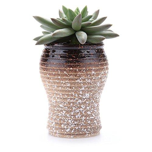 T4U 7-10cm Snowflakes Glaze breve Sucuulent cactus fiore vasi fioriere finestra i contenitori vasi per fiori vasi, Ceramica, Shape 4, small