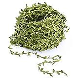 Amkun, liane artificiali di plastica da appendere, 40m, in tessuto, foglie di edera finte, per ghirlande, ideali per decorazioni ai matrimoni, decorazione da parete, per le feste Green