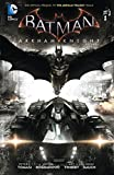 Image de Batman: Arkham Knight Vol. 1