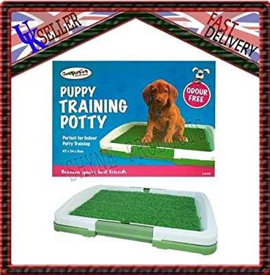 Indoor Clean Puppy. Dog,cat Pet Potty Pad Toilet Trainer Training Mat Tray