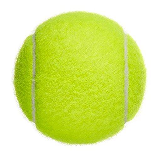 Hosaire Tennis Balls Professionelle Training Tennisbälle Practice Ball Outdoor Sports Spielzeug Tennis Ball für Haustiere Hunde Katze