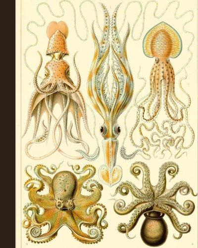 Vintage Octopus Nature Illustration Journal: 8