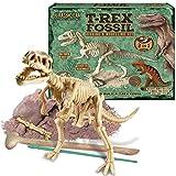 Jurassic Era T Rex Dinosaur 2 In 1 Digging Fossil Excavation And Modelling Dough Set For Children