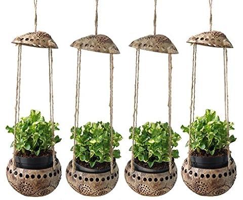proudnature Lot de 4Jardin décoratif perforé Coquille de Noix de Coco Pot de fleurs à suspendre Diamètre 7,6cm
