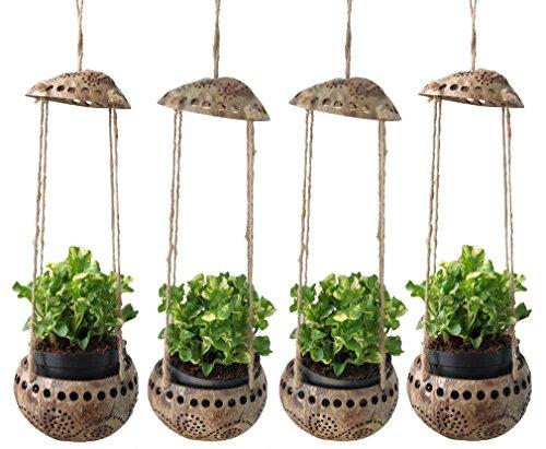 Exotic Elegance 4piezas jardín maceta decorativa de corteza de coco Planta de flores colgantes.