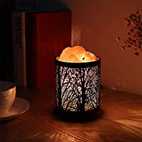 Natural Himalayan Salt Lamp, Zanflare Air Purifying Crystal Salt Rock Lamp Night Light with Forest Design Metal Basket, Dimmable Touch Switch, Holiday Birthday Gift from Zanflare