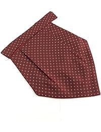Sir Michele Designer Silk Micro Fiber Cravat