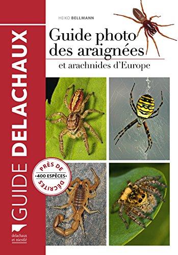 Guide photo des araignées et arachnides d'Europe par Heiko Bellmann