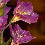 Deko LED Lilie weiß lila beleuchtet Batterie Blumentopf Kunstpflanze Blume 42cm Kunstpflanze Kunstblume mit Licht Lichter Tischlampe Tischleuchte - 4