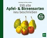 550 alte Apfel- & Birnensorten neu beschrieben (Amazon.de)