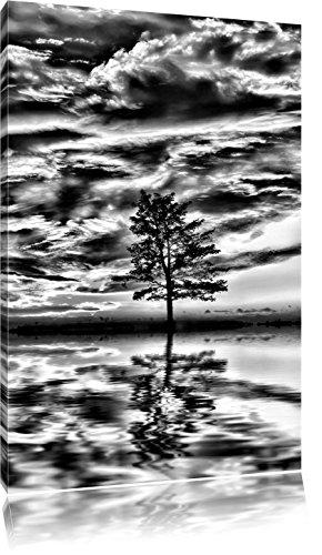 Pixxprint Monocrome, Insel im Meer Baum Sonnenaufgang Steine, Format: 80x60 auf Leinwand, XXL riesige Bilder fertig gerahmt mit Keilrahmen, Kunstdruck auf Wandbild mit Rahmen. -