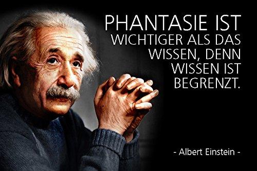 Schatzmix Albert Einstein - Phantasie ist Wichtiger als Das Wissen, Denn Wissen ist begrenzt Spruch blechschild