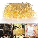 Fitfirst 300 LEDs 3M*3M Guirlande Lumineuse 8 Modes, Atmosphère Étoilée De Fée avec Boîtier De Batterie pour Décoration De Jardin, Chambre à Coucher, Noël, Mariage (Blanc Chaud)