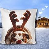 Mars & More - Bulldogge - Weihanchten - Kissen - Dekokissen - 100 % Baumwolle 50 X 50 cm m
