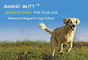 Magno Mutt - Advanced Magnetic Dog Collar - Cherry Red - Medium (15 - 18¼ inches). Now with new Metal D Ring