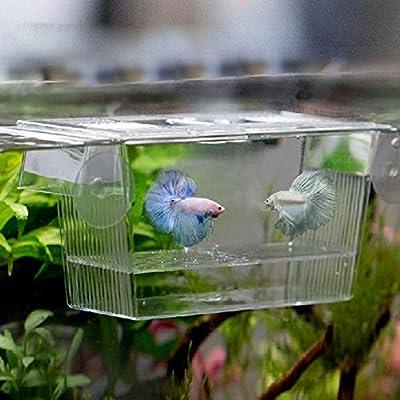 Carry stone Acryl Fish Tank Zucht Züchter Isolation Box Aquarium Hatchery Inkubator Haus Langlebig und nützlich