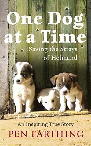 One Dog at a Time: Saving the Strays of Helmand